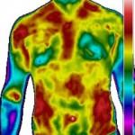 Thermographie Westernreiter